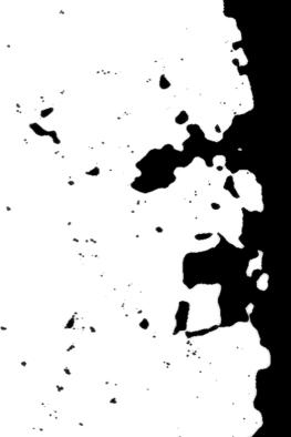 2. mad cowZa titor doZa (https://society6.com/product/mad-cowza-titor-doza_print?sku=s6-3904945p4a1v45)